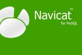 Navicat 2003-can't connect to MYSQL server on 'localhost'(10038)解决方法