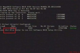 LSI 1068E Ctrl+M快捷键阵列卡raid0配置步骤